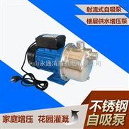 凌霄牌不銹鋼家用別墅樓層供水增壓自吸泵