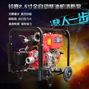 移動小型柴油機消防泵
