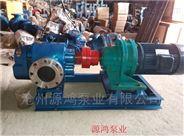 源鴻泵業LC18-0.6高粘度羅茨泵