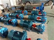 沧州源鸿KCB83.3不锈钢齿轮油泵,KCB齿轮泵