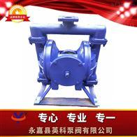 YK-65Z污水装置手动隔膜泵