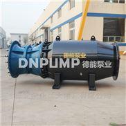 水上游乐项目用轴流泵卧式安装