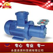 CWB--磁力传动旋涡泵