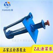 水泵厂家直销100ZJL-31立式液下渣浆泵朴厚