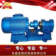 齿轮润滑油泵