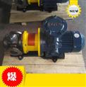 磁力驅動齒輪泵 不銹鋼磁力泵 防泄漏泵