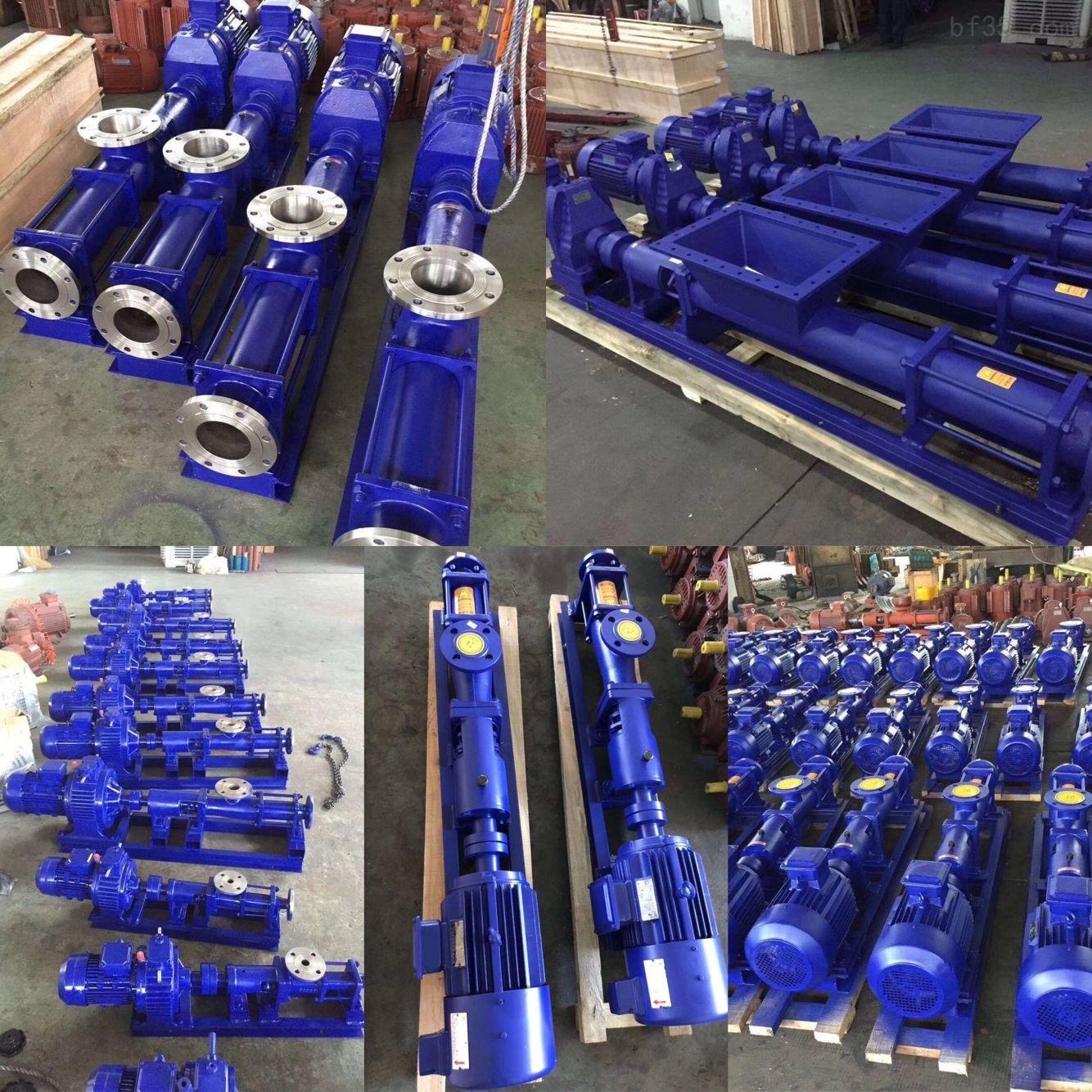 G10-1小型不锈钢螺杆泵