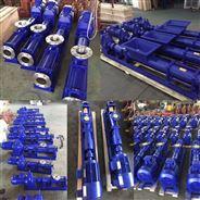 G10-1小型不銹鋼螺桿泵