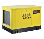 多燃料20千瓦汽油发电机价格