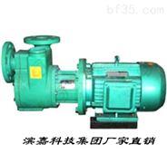 FPZ型耐腐塑料自吸泵